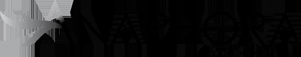 Anaphora by Dr. Christine Ibrahim Logo
